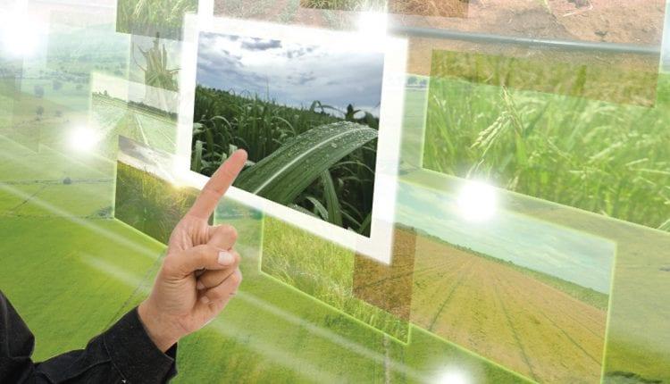 pointing towards agri-tech farming